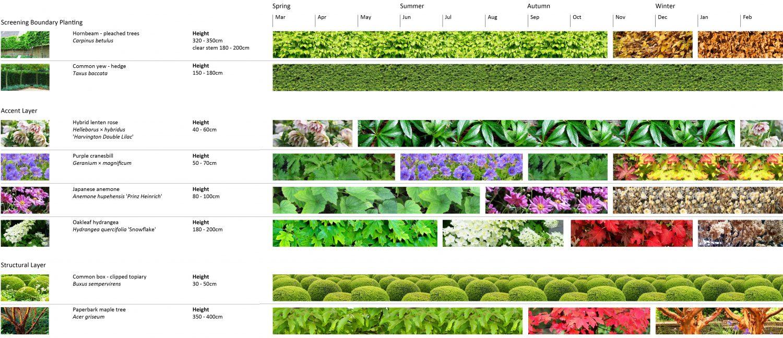 DesignSpace-paleta rostlin
